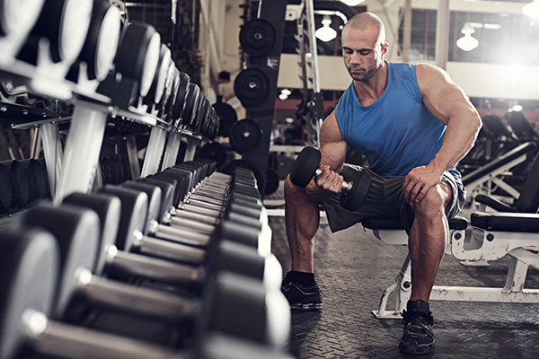 all-you-need-to-know-about-bulking-cutting